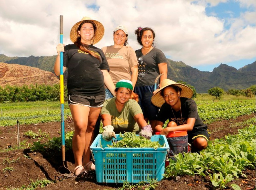 Social entrepreneurs to share their impact on Hawai'i's economy ...